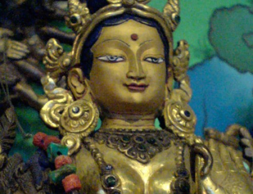 September 25, 2016: Jetsun Kushok will lead the Sunday Green Tara Puja