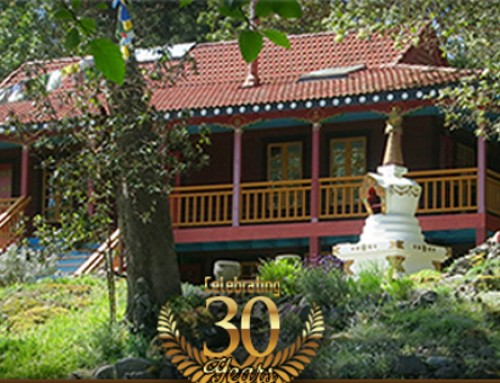 Join Us in Celebrating Our 30th Anniversary!